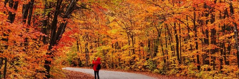 加拿大最美赏枫路线