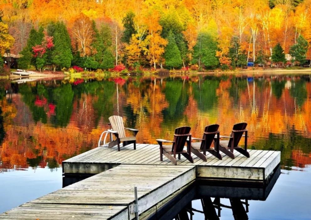 阿岗昆省立公园(Algonquin Provincial Park)