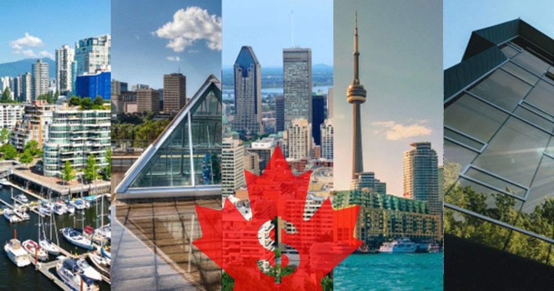 加拿大麦克林2019年权威大学排名