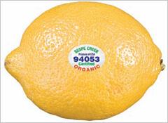 水果和蔬菜标签背后隐藏的意义