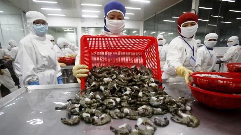 加拿大超市1/3的冷冻虾感染抗生素细菌!