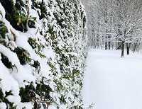 冬天的多伦多周边竟然藏了这么多仙境!