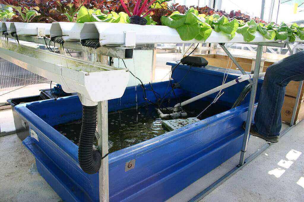 养殖水体与种植系统分离