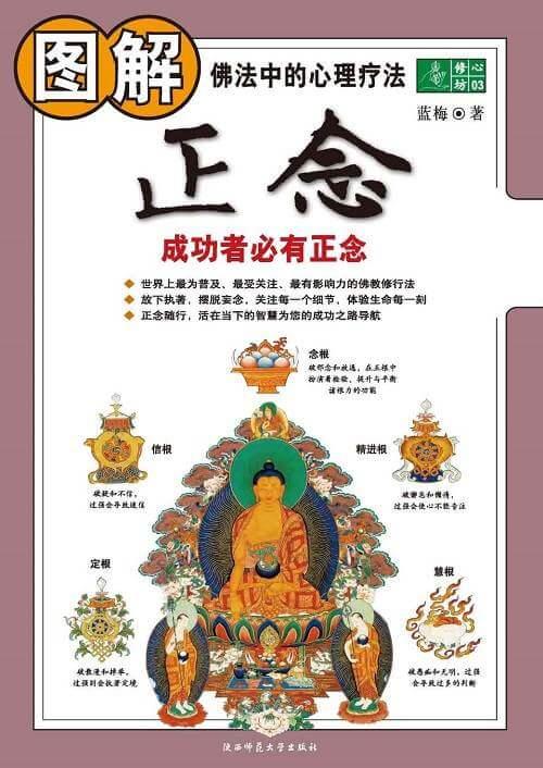 图解正念:佛法中的心理疗法